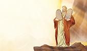 Милосердие Моисея возделано